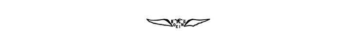 Boeing Logo - 1920 2