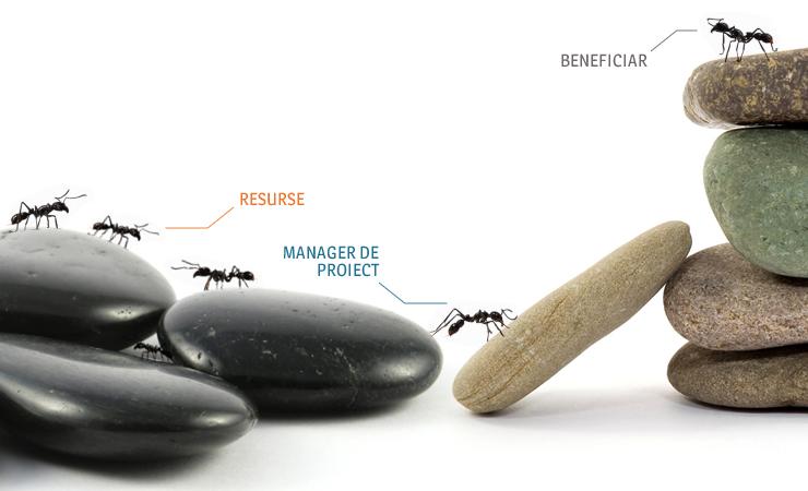 Management de Proiect - Managerul de Proiect